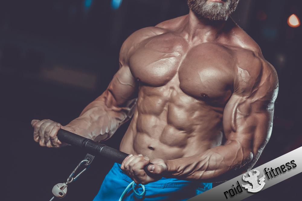 anabolic steroid roidfitness.com