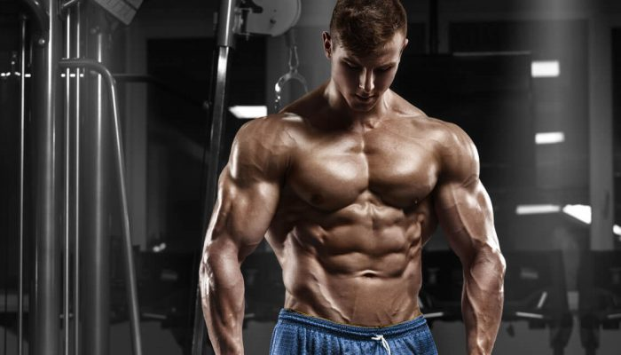 roidfitness steroid for sale