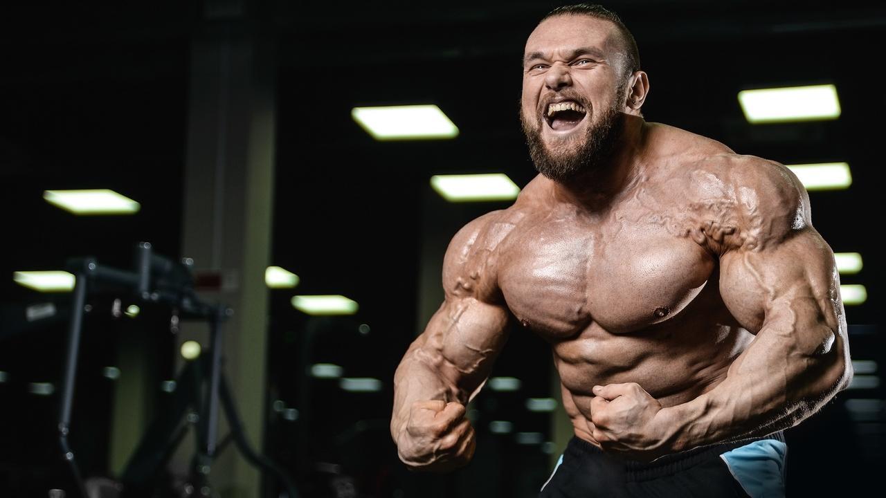 roidfitness.com legal steroids online