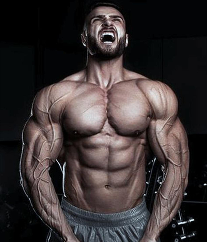 roidfitness workout