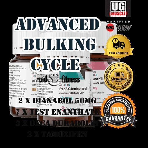 ADVANCED BULKING CYCLE STEROIDS