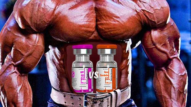 NPP steroid vs Deca steroid roidfitness.com
